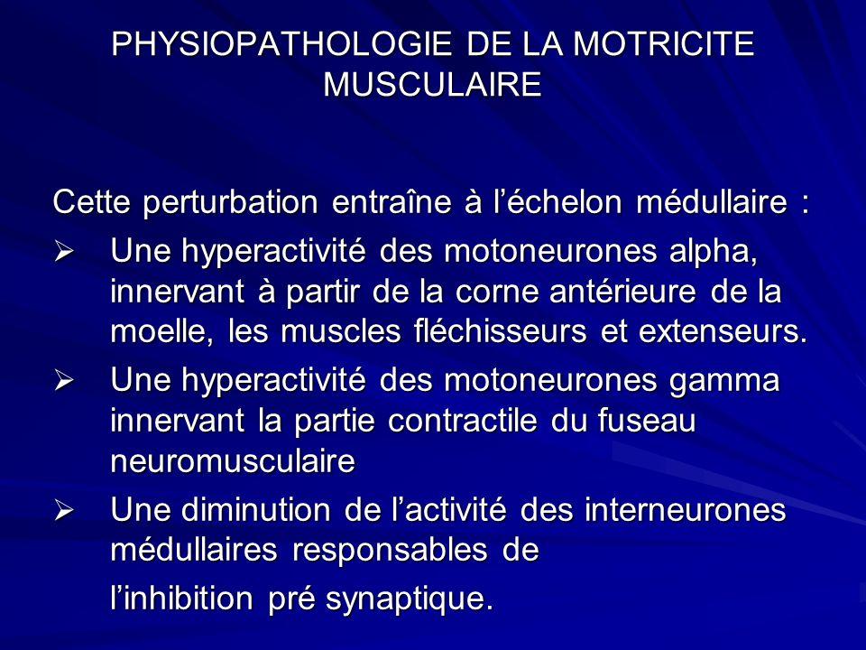 PHYSIOPATHOLOGIE DE LA MOTRICITE MUSCULAIRE