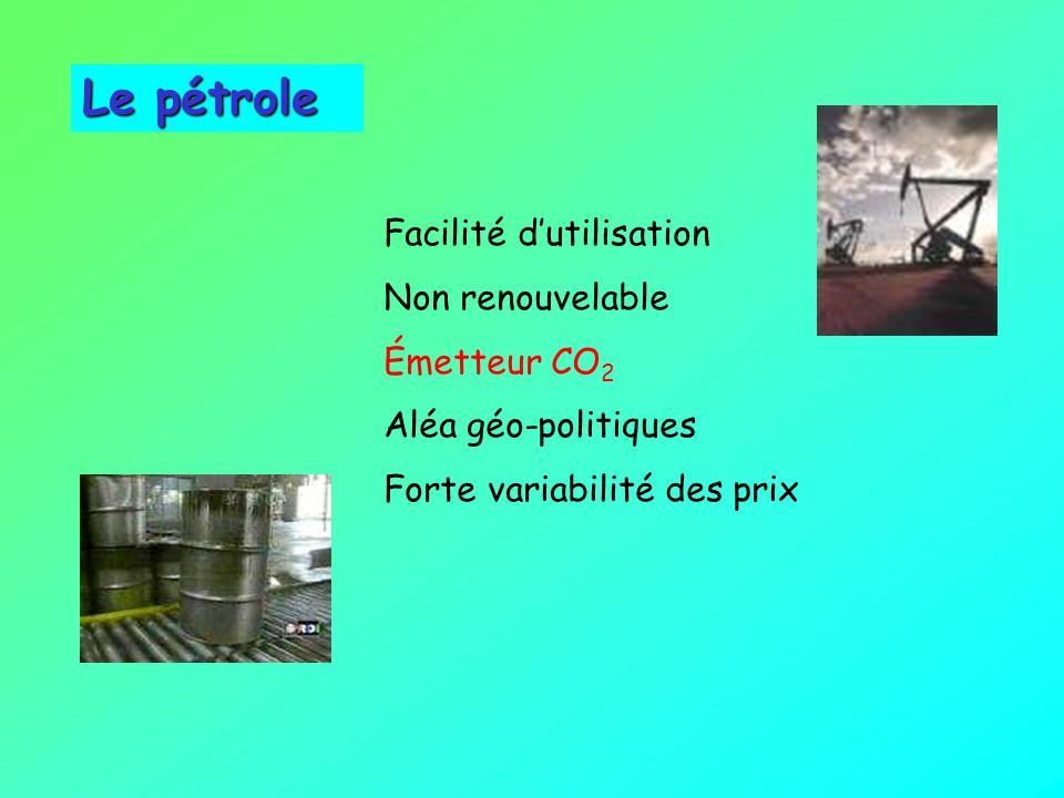 Le pétrole Facilité d'utilisation Non renouvelable Émetteur CO2