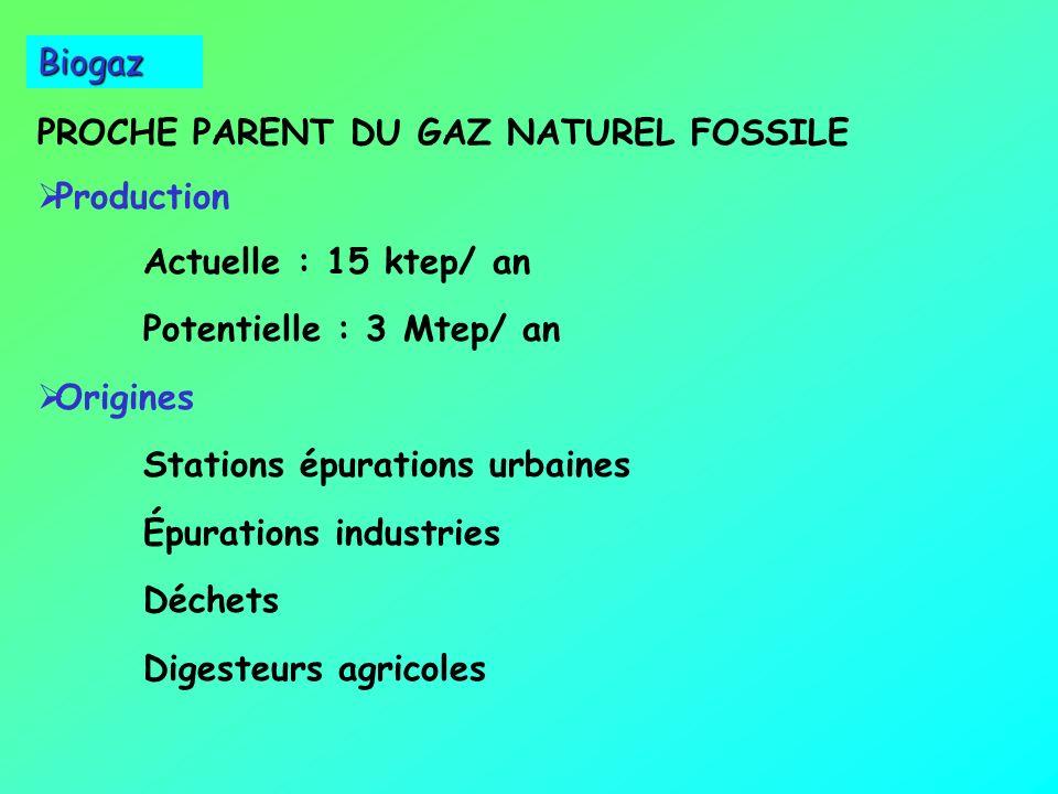 PROCHE PARENT DU GAZ NATUREL FOSSILE Production Actuelle : 15 ktep/ an