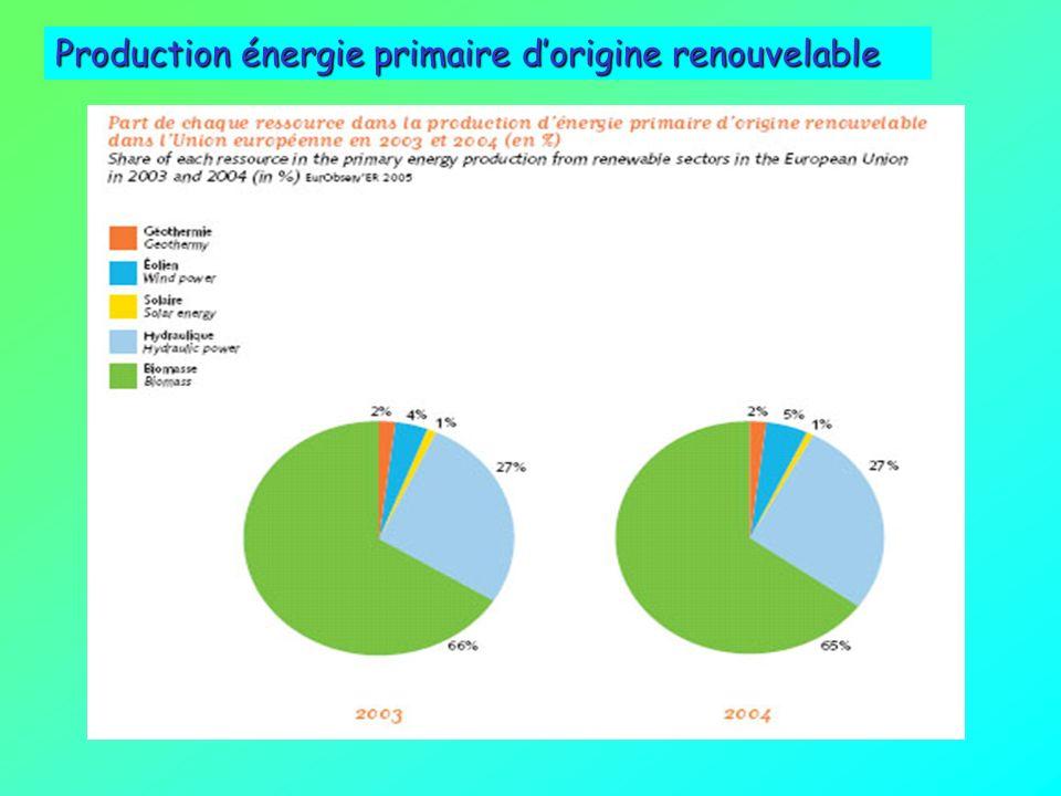 Production énergie primaire d'origine renouvelable