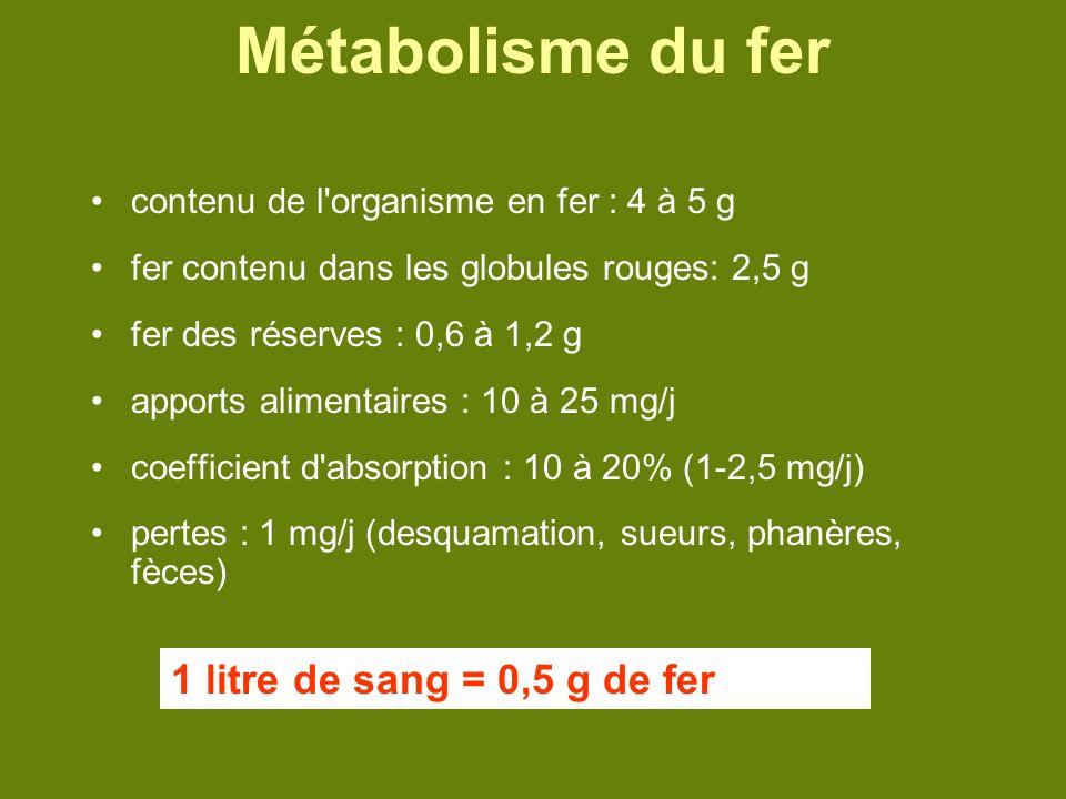 Métabolisme du fer 1 litre de sang = 0,5 g de fer