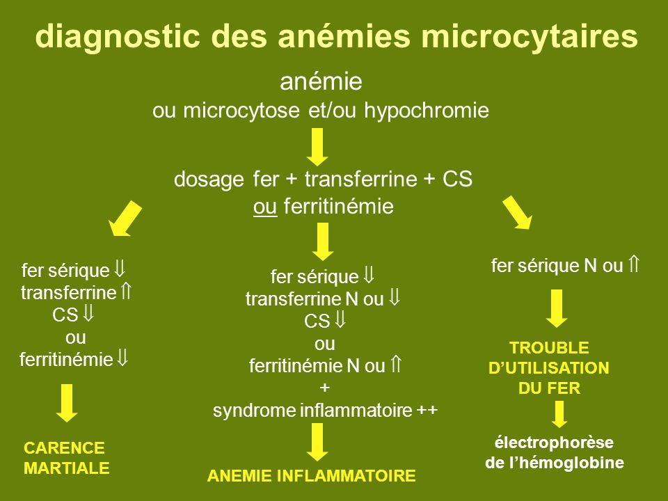 diagnostic des anémies microcytaires