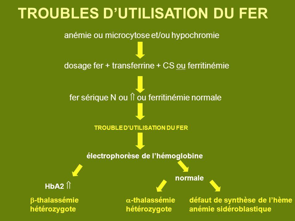 TROUBLES D'UTILISATION DU FER
