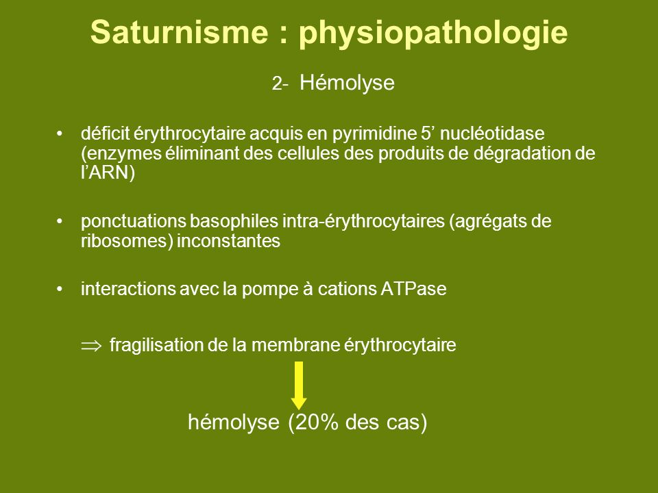 Saturnisme : physiopathologie 2- Hémolyse