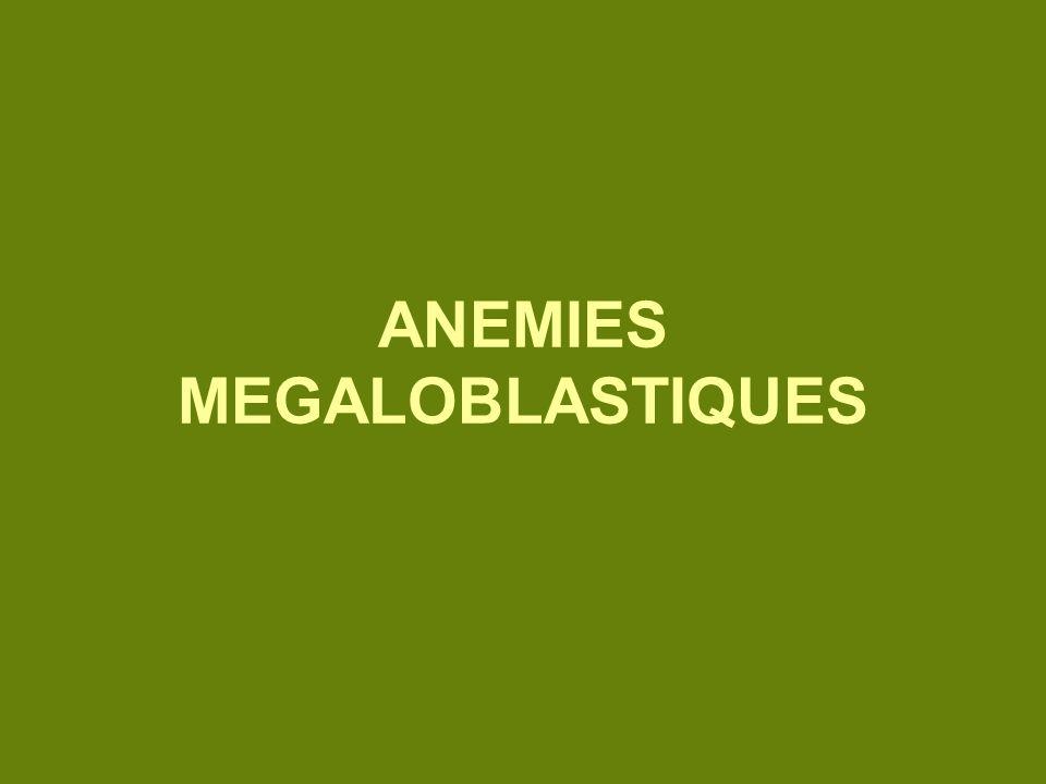 ANEMIES MEGALOBLASTIQUES