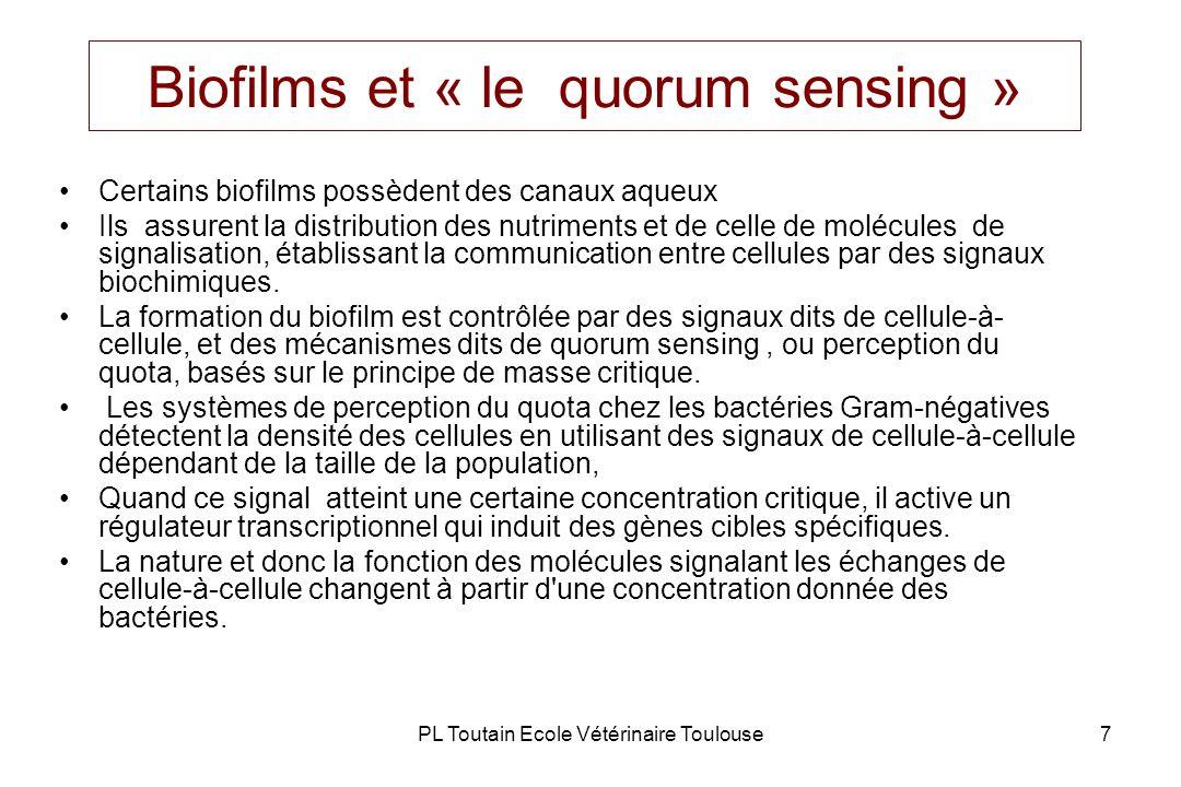 Biofilms et « le quorum sensing »