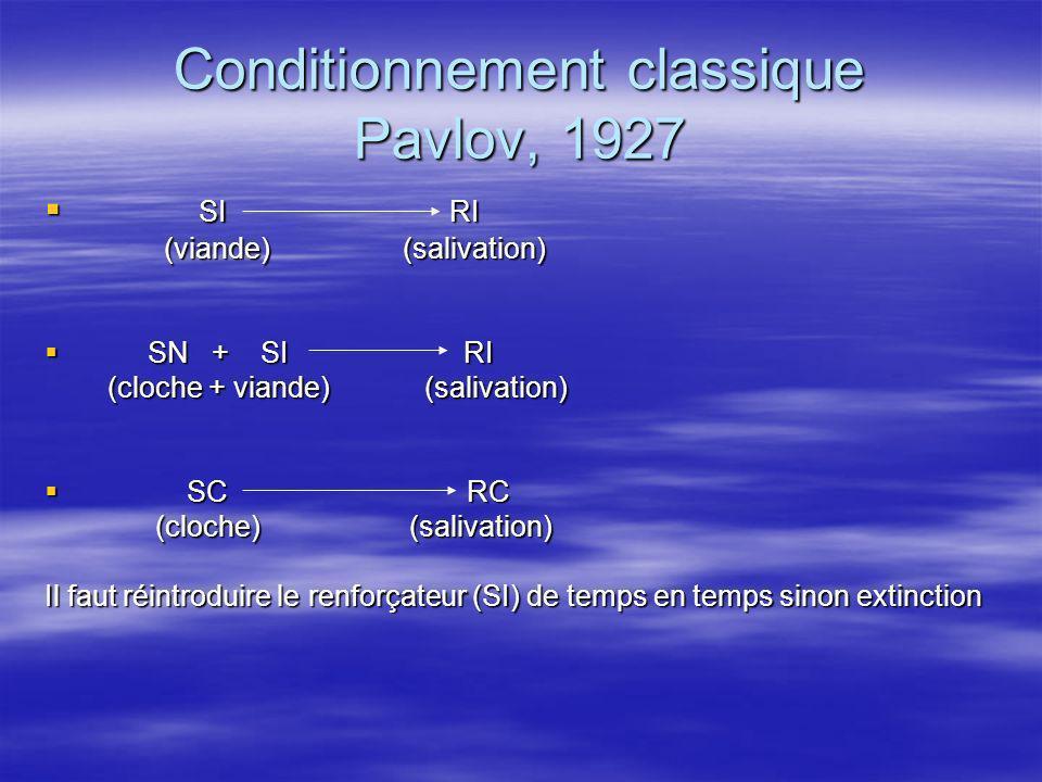 Conditionnement classique Pavlov, 1927
