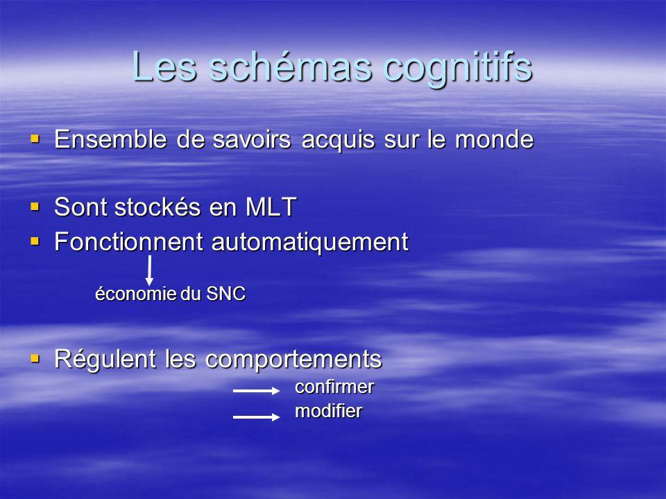 Les schémas cognitifs Ensemble de savoirs acquis sur le monde