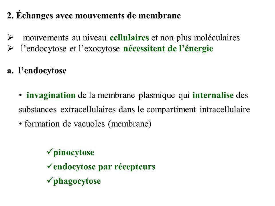 2. Échanges avec mouvements de membrane
