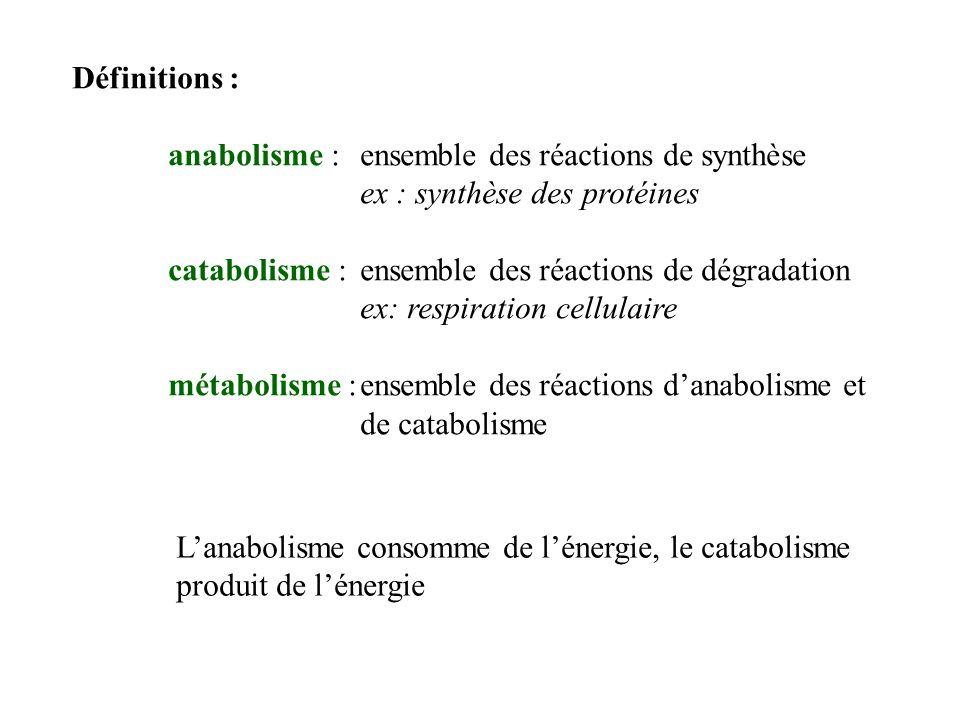 Définitions : anabolisme : ensemble des réactions de synthèse. ex : synthèse des protéines. catabolisme : ensemble des réactions de dégradation.