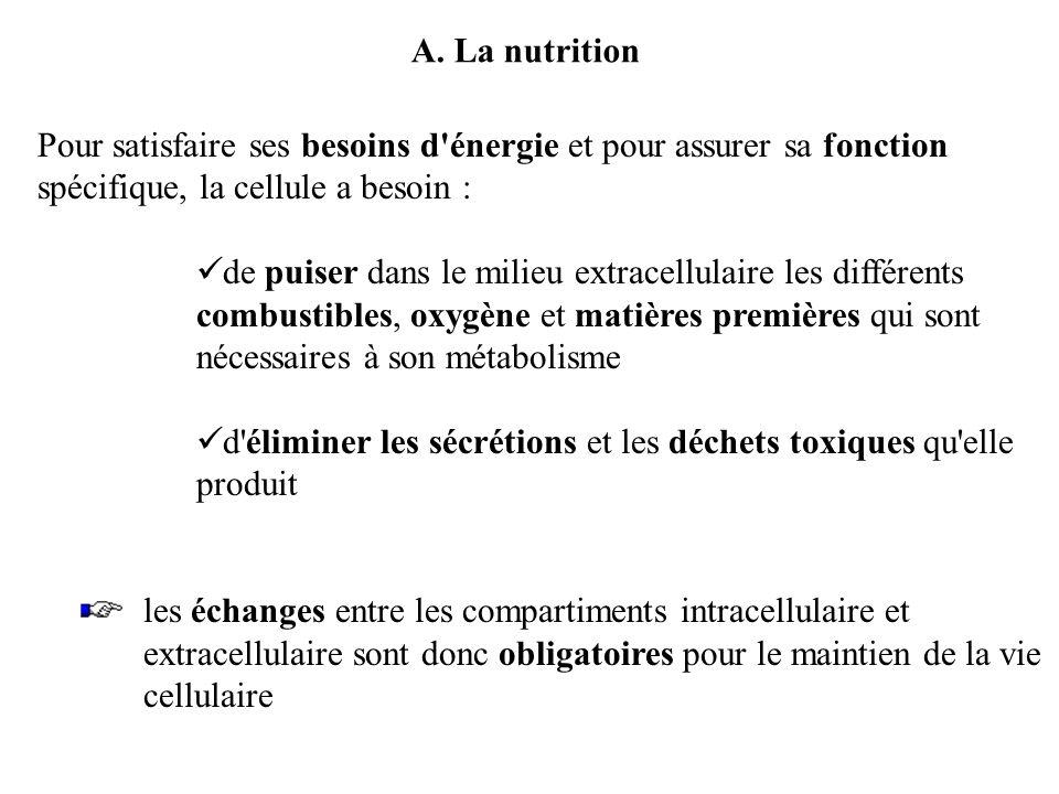 A. La nutrition Pour satisfaire ses besoins d énergie et pour assurer sa fonction spécifique, la cellule a besoin :