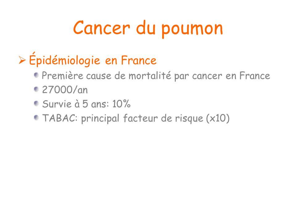 Cancer du poumon Épidémiologie en France