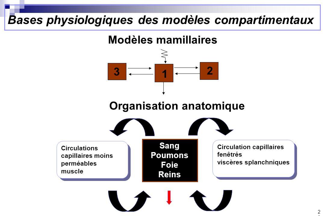 Bases physiologiques des modèles compartimentaux