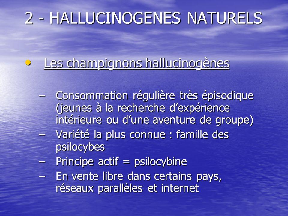 2 - HALLUCINOGENES NATURELS