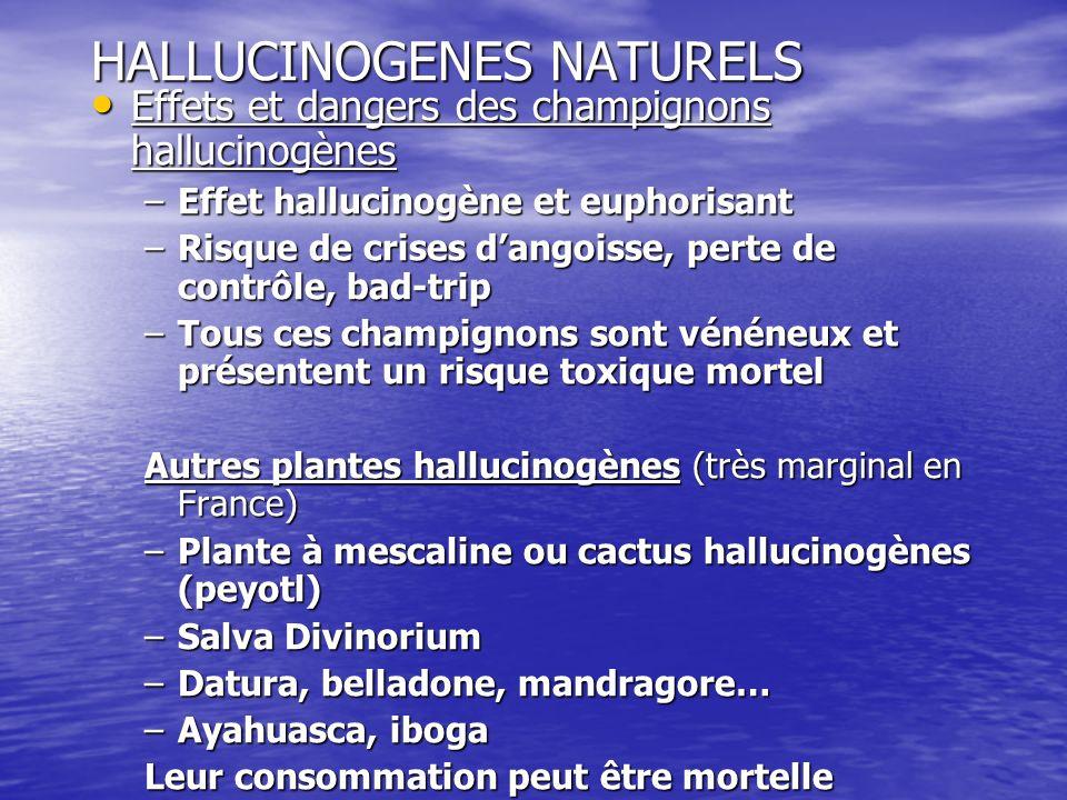 HALLUCINOGENES NATURELS