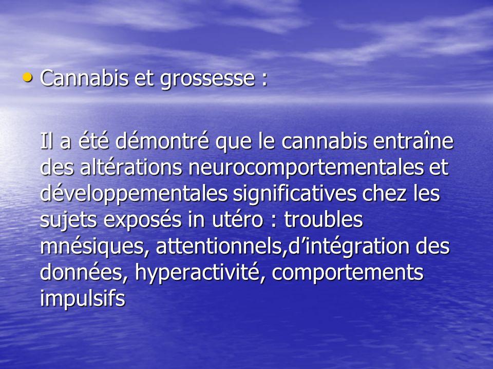 Cannabis et grossesse :
