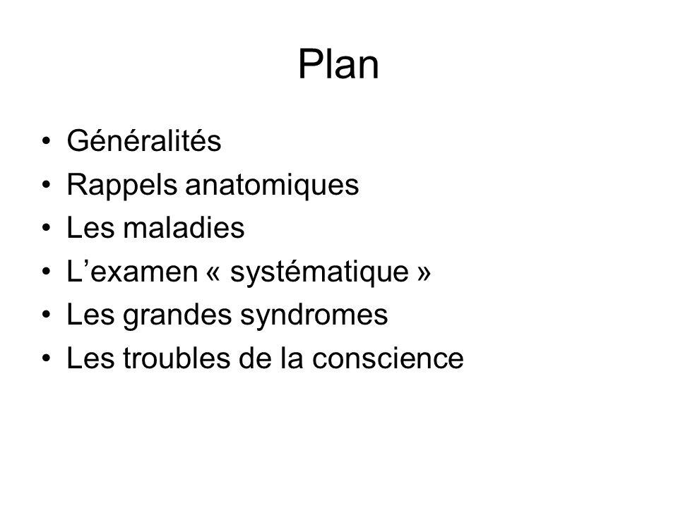 Plan Généralités Rappels anatomiques Les maladies