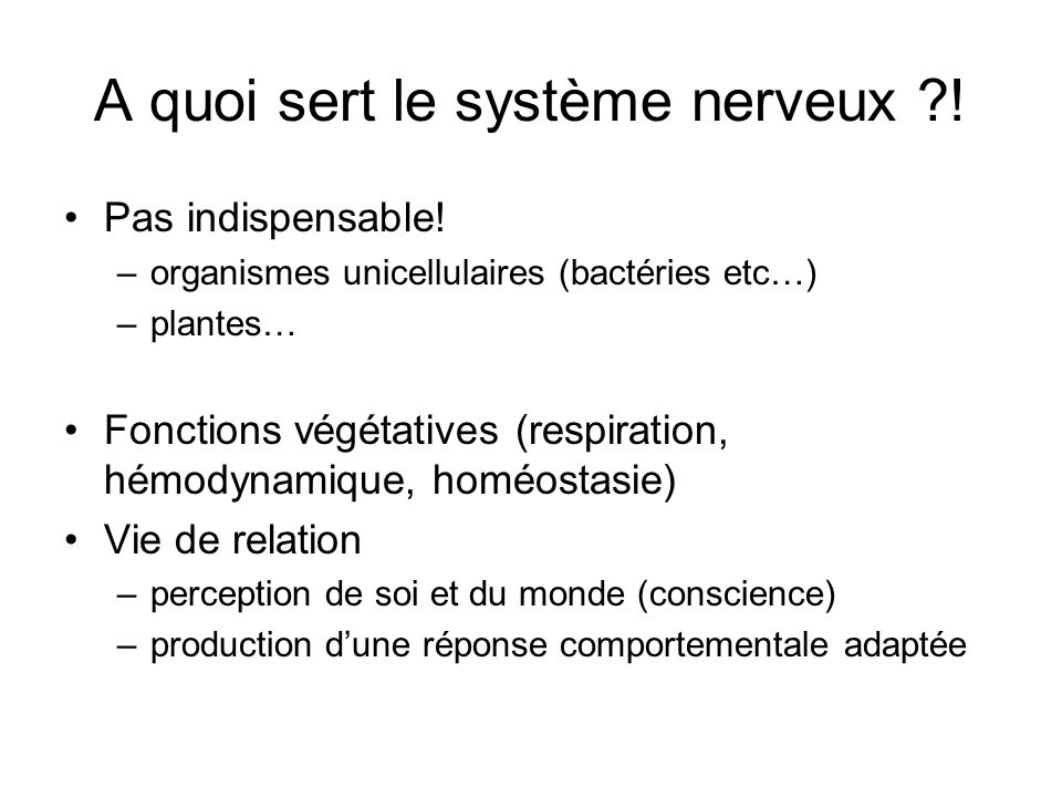 A quoi sert le système nerveux !