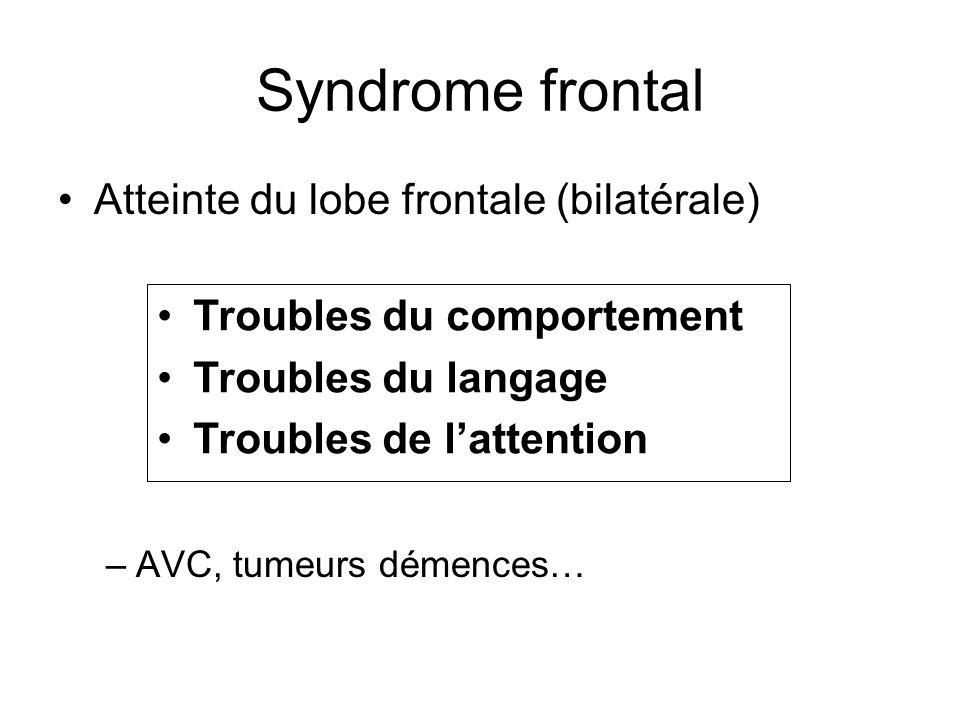 Syndrome frontal Atteinte du lobe frontale (bilatérale)