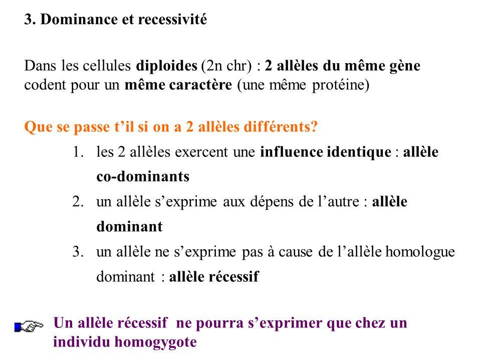 3. Dominance et recessivité