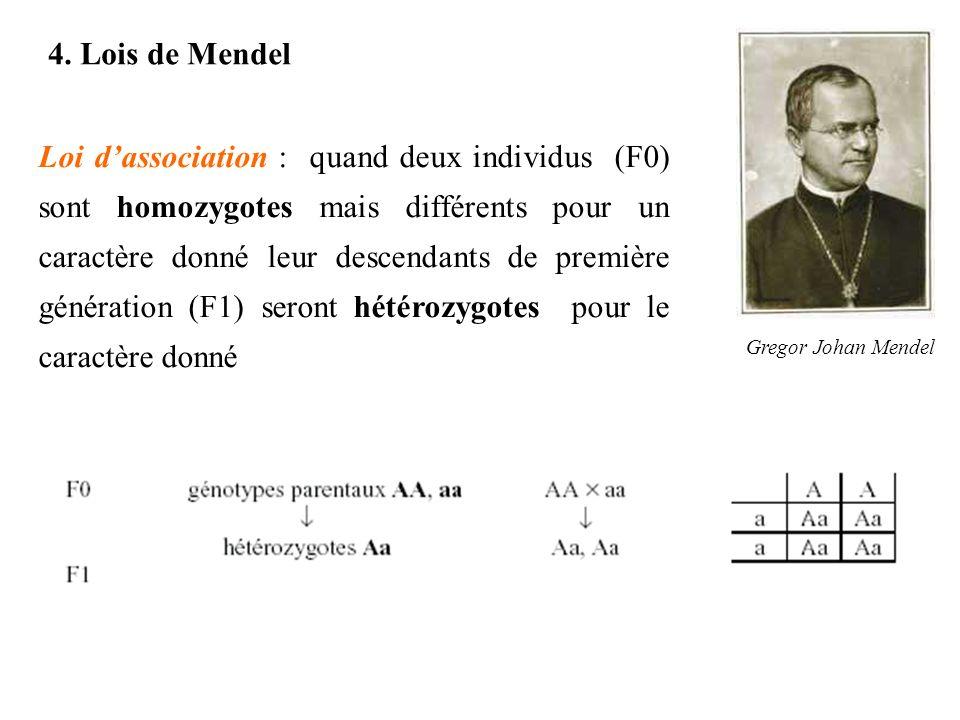 4. Lois de Mendel