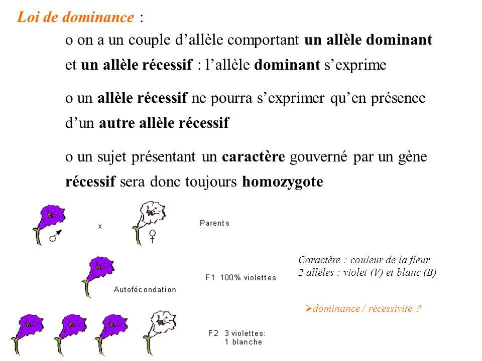 Loi de dominance : on a un couple d'allèle comportant un allèle dominant et un allèle récessif : l'allèle dominant s'exprime.