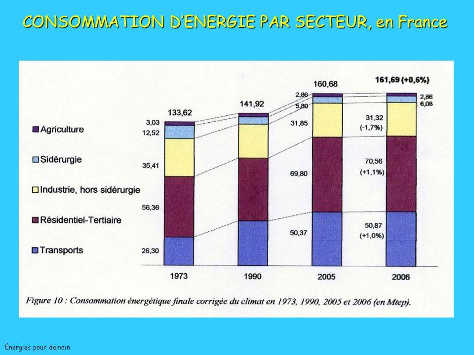 CONSOMMATION D'ENERGIE PAR SECTEUR, en France
