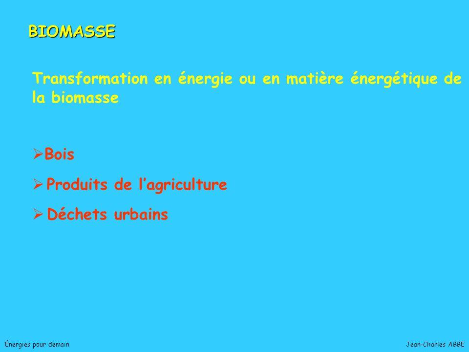 Transformation en énergie ou en matière énergétique de la biomasse