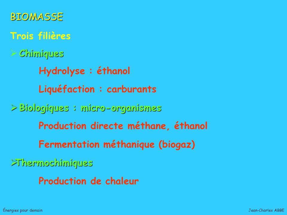 Liquéfaction : carburants Biologiques : micro-organismes