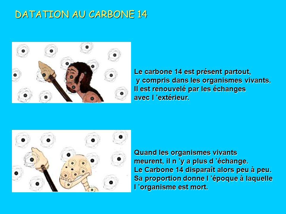 DATATION AU CARBONE 14 Le carbone 14 est présent partout,