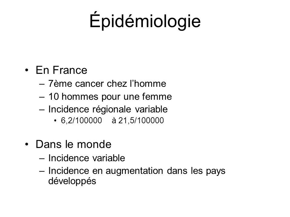 Épidémiologie En France Dans le monde 7ème cancer chez l'homme