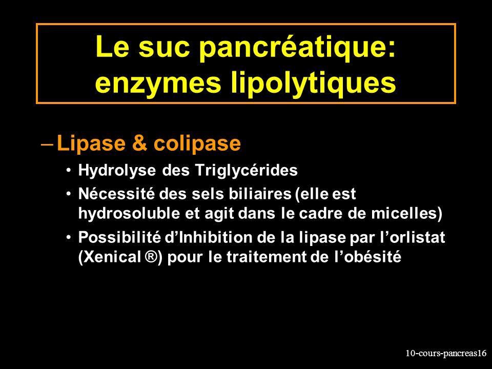 Le suc pancréatique: enzymes lipolytiques