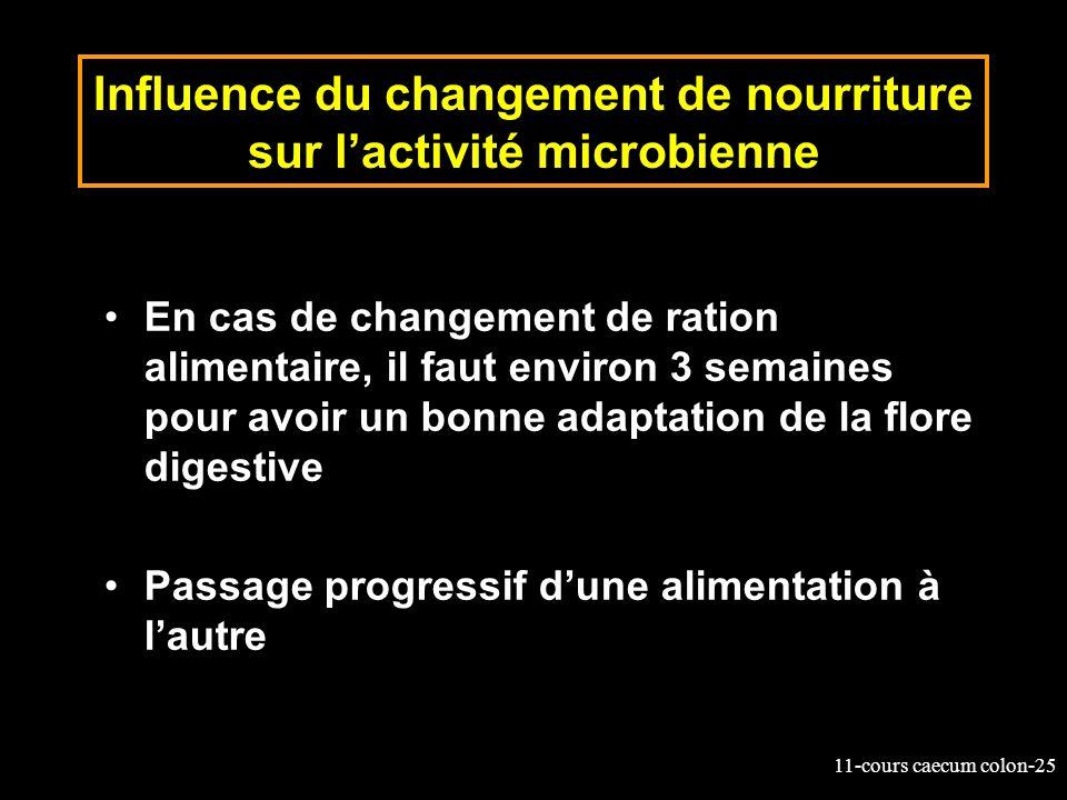 Influence du changement de nourriture sur l'activité microbienne