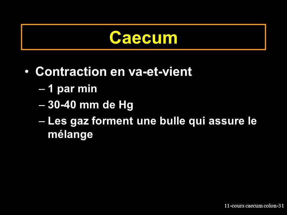 Caecum Contraction en va-et-vient 1 par min 30-40 mm de Hg