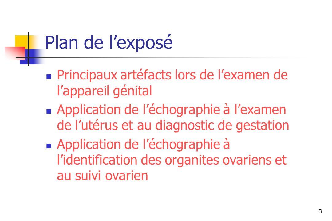 Plan de l'exposéPrincipaux artéfacts lors de l'examen de l'appareil génital.