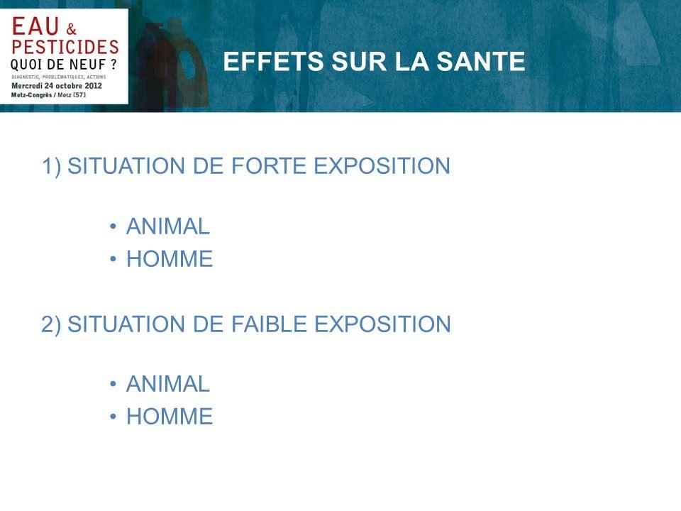 EFFETS SUR LA SANTE 1) SITUATION DE FORTE EXPOSITION ANIMAL HOMME