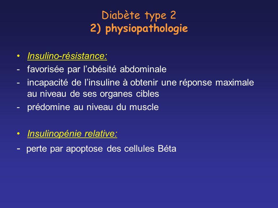 Diabète type 2 2) physiopathologie