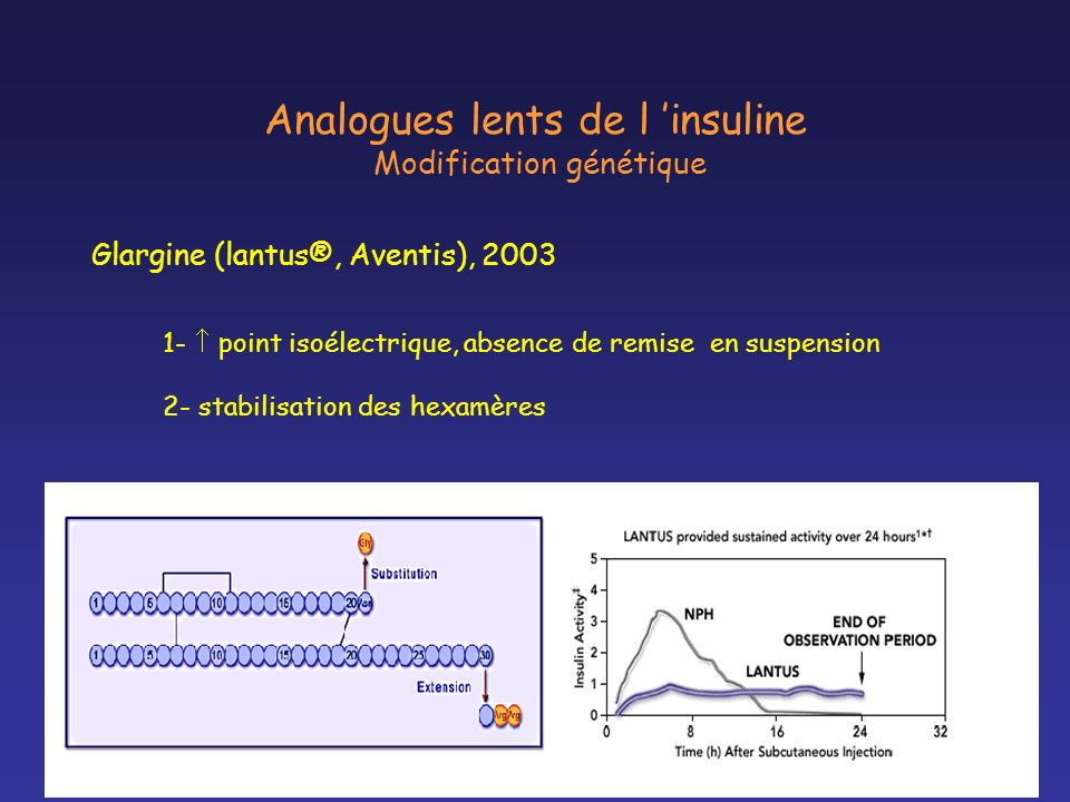 Analogues lents de l 'insuline Modification génétique