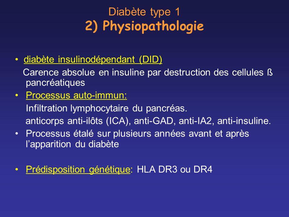 Diabète type 1 2) Physiopathologie