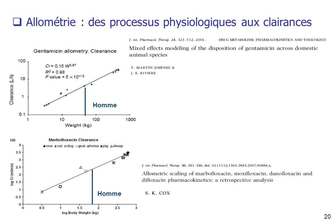 Allométrie : des processus physiologiques aux clairances