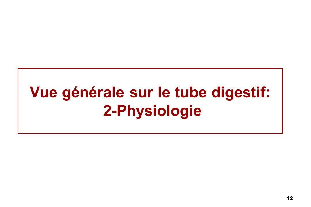 Vue générale sur le tube digestif: 2-Physiologie