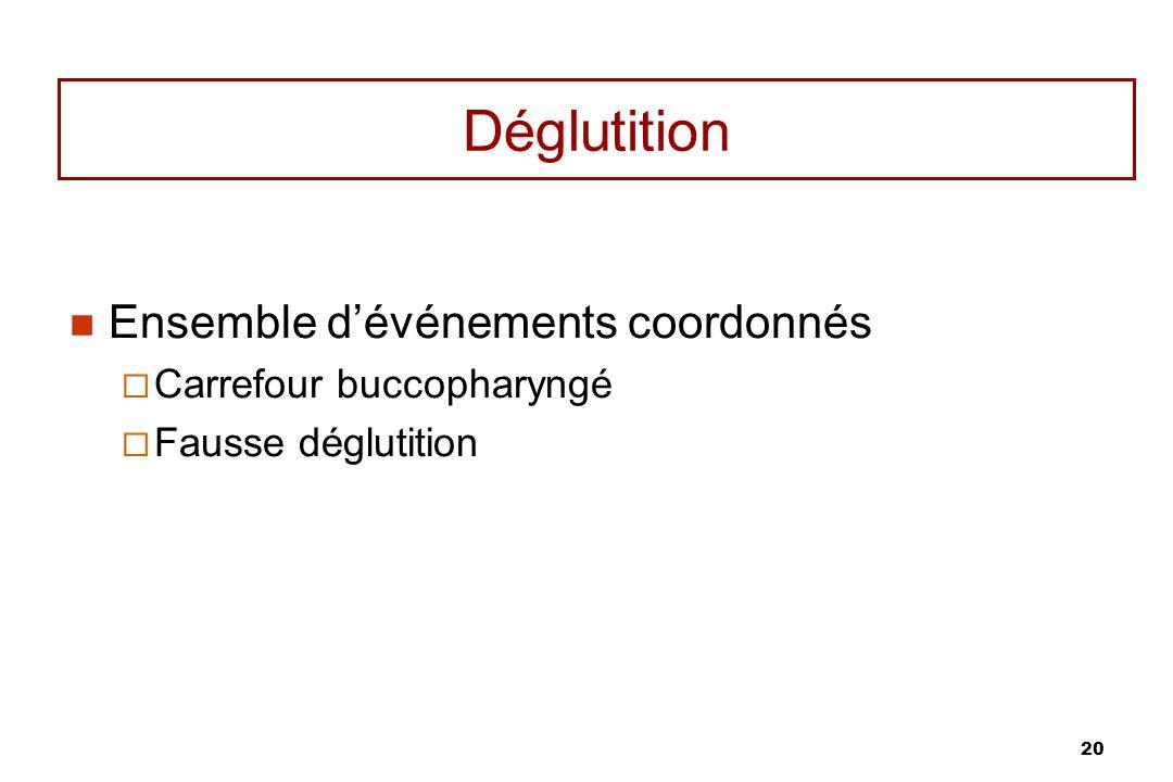 Déglutition Ensemble d'événements coordonnés Carrefour buccopharyngé