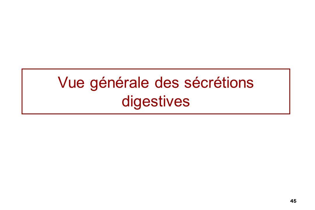 Vue générale des sécrétions digestives