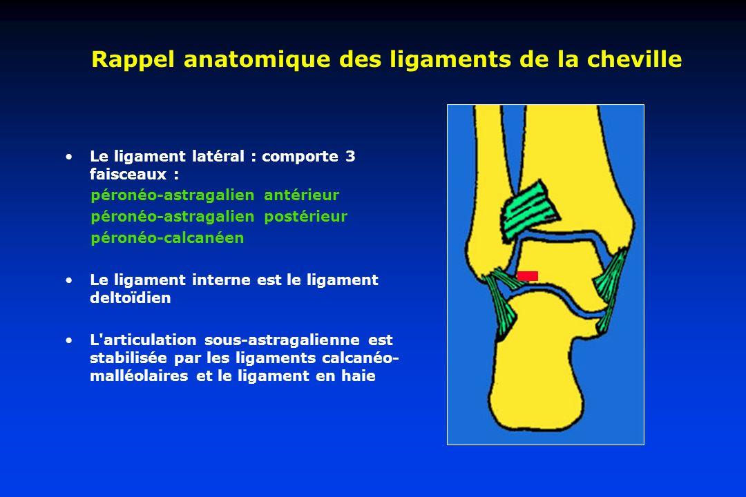 Rappel anatomique des ligaments de la cheville