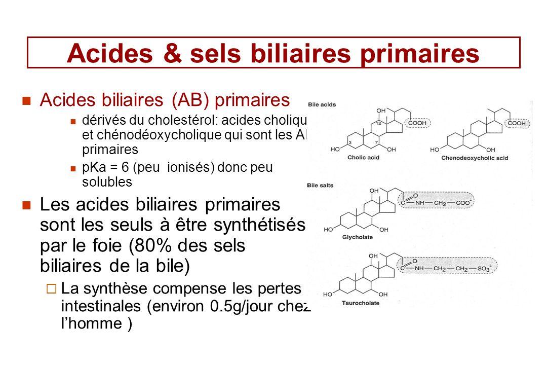 Acides & sels biliaires primaires