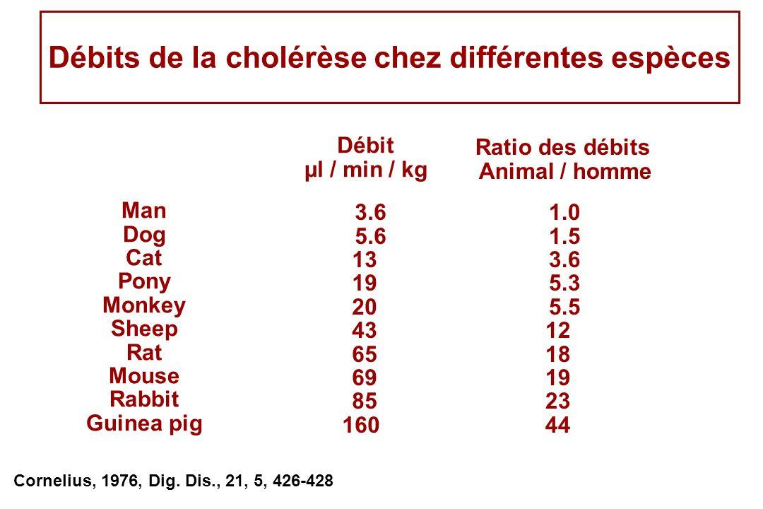 Débits de la cholérèse chez différentes espèces