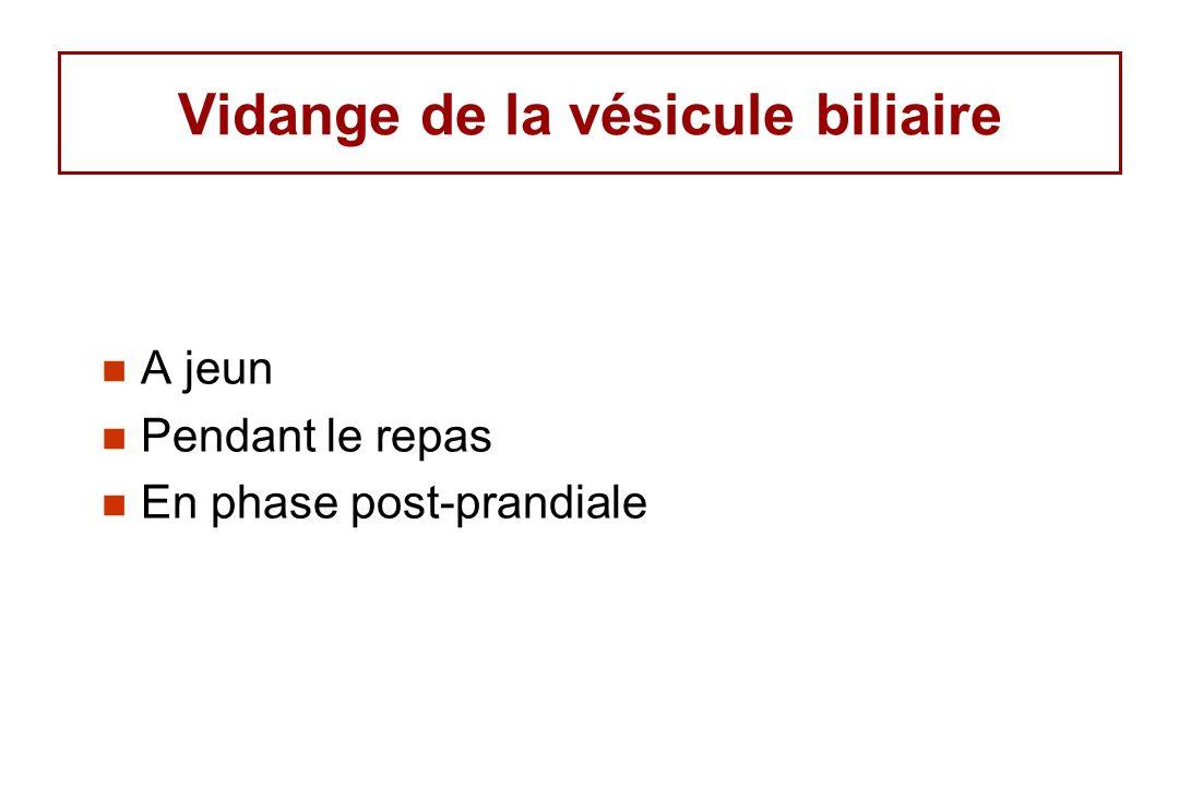 Vidange de la vésicule biliaire