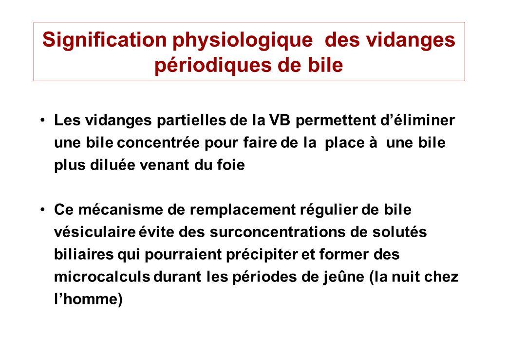 Signification physiologique des vidanges périodiques de bile