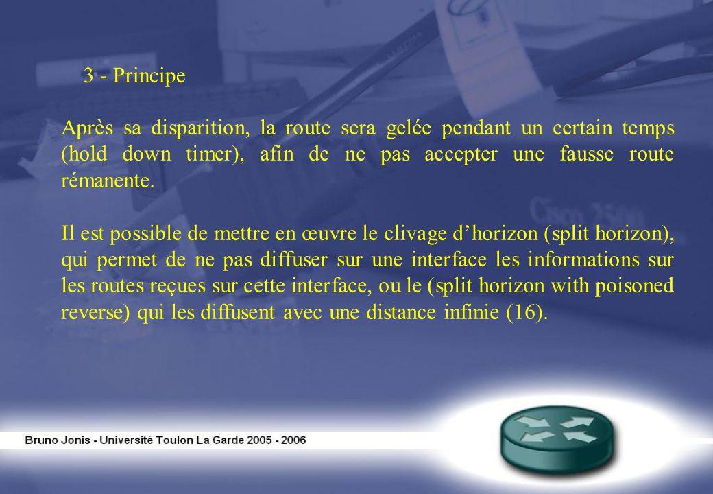 3 - Principe