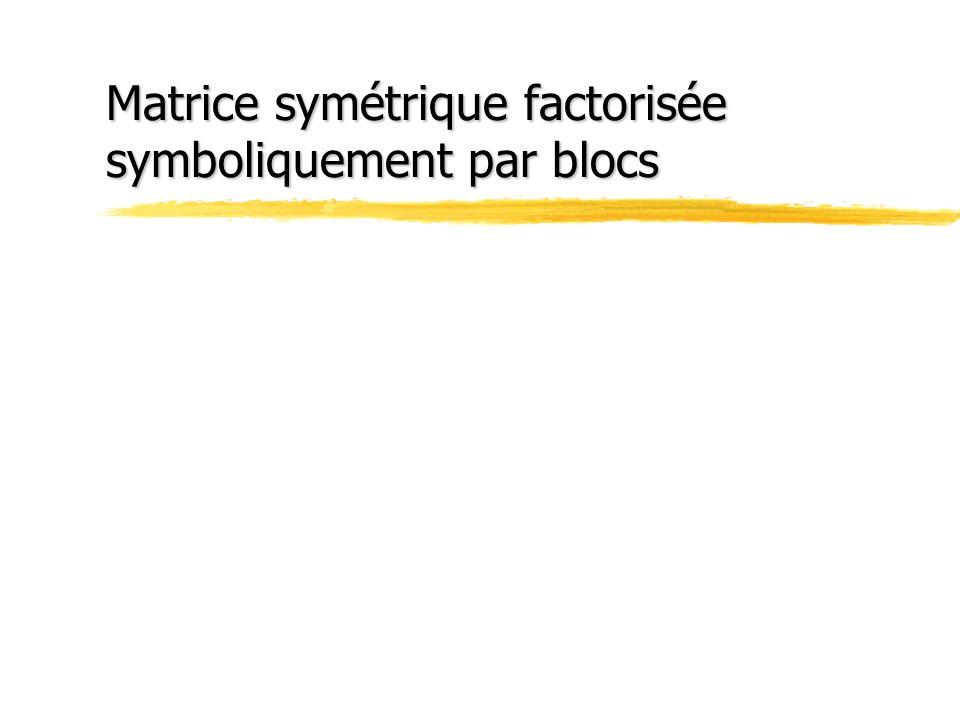 Matrice symétrique factorisée symboliquement par blocs